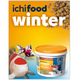 Alimento Ichi Food Winter 4 Kg de 4 mm para carpas Koi e peixes
